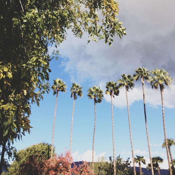 Winter in Azusa. - Azusa Pacific University Seven Palms - #iHeartAPU