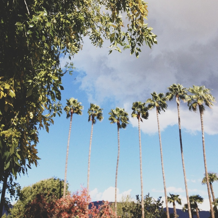 Seven Palms Apartments: 68 Best Images About Home Is Where Azusa, California Is On