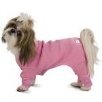 Precious Shitzu: Life, Josie Dogs, Random, Shitzu Dogs, Long John, Precious Shitzu I, Little Dogs, Supermodels, Adorable Animal