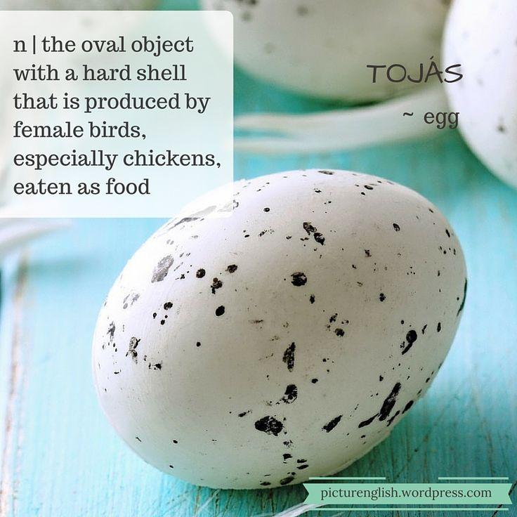 Egg / Tojás