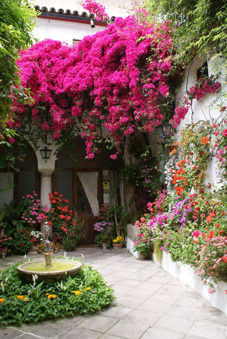 Stunning and colorful flower-filled courtyard.