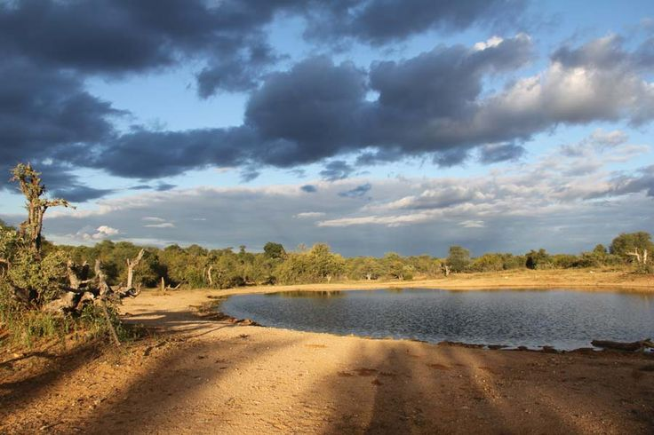 Makumu Game Lodge surrounding