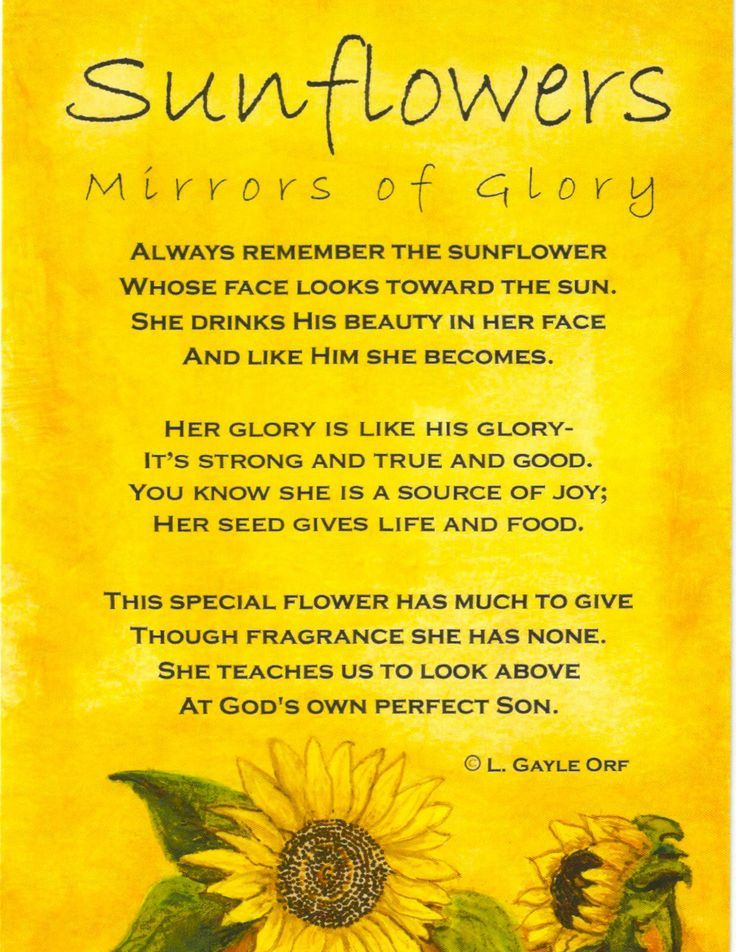 Sunflower Quotes Or Poems
