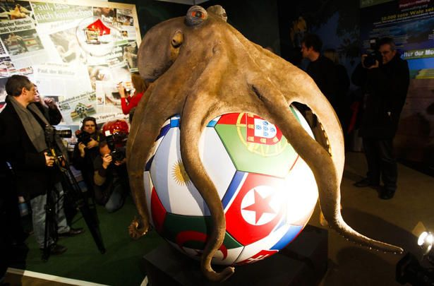 """Paul the Octopus died in Oct 2010 but loyal fans demanded that he be remembered in a BIG way: a 6 foot statue, scary tentacles spreading over giant football (soccer ball). Research by DdO:) - It's said that Paul the cephalopod """"correctly predicted"""" the results of Germany's 7 World Cup games & the Spain-Netherlands final. Predictions were ascertained by observing which team flag covered the box he opened. [Boxes held mussel snacks!] The memorial also contains the beast's cremains in an urn."""