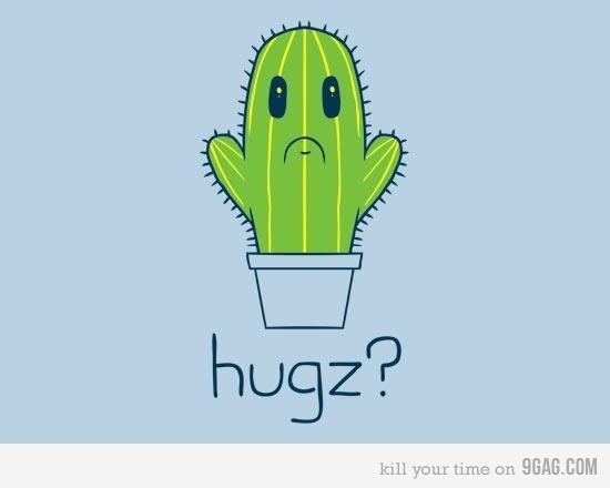 Awwww ;_;  #hug #hugz #cactus #cute #kawaii #awww #cuddlesPoor Cactus, Cacti, Funny Pictures, Random, Inspiration Pictures, Funny Stuff, Humor, T Shirts, Hugz