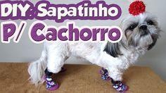 DIY: Como fazer sapatinho confortavel para cachorro