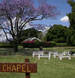 Queens Park Bush Chapel Ipswich