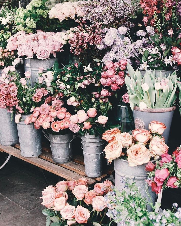 Pinterest Abbyshowie Flower Aesthetic Flower Market Pretty Flowers