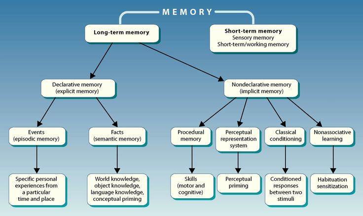 Image result for episodic memory