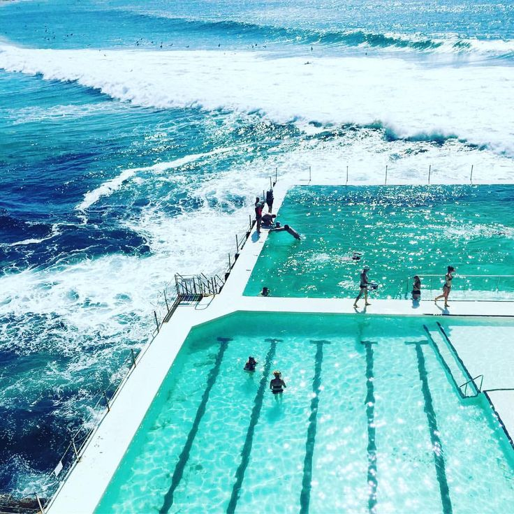 """THE NUTRITION COLLECTIVE (@thenutritioncollective) on Instagram: """"Morning swim - check ✔️"""""""