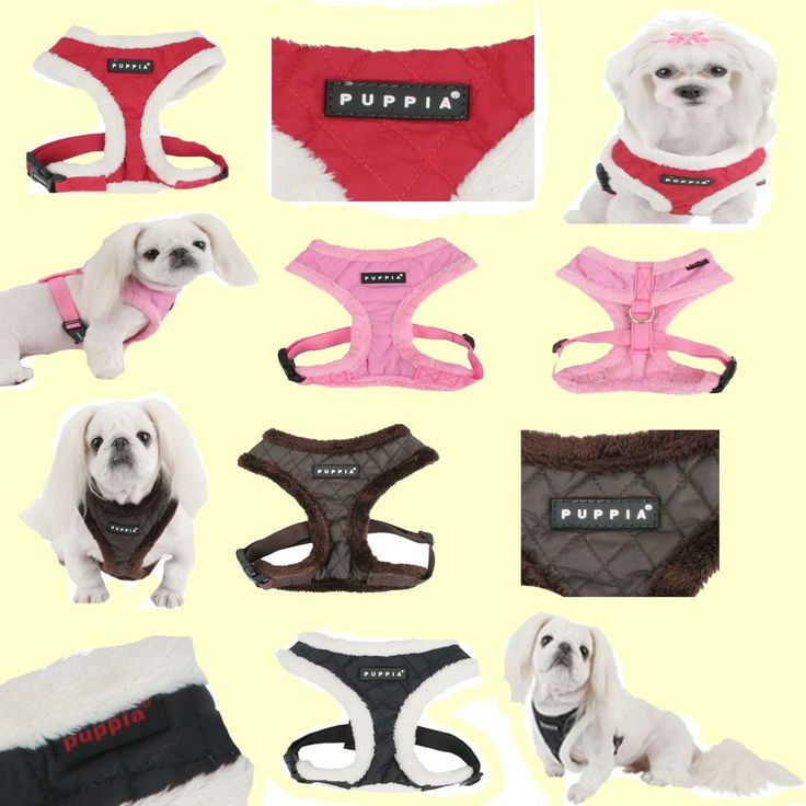New Diamond (winter) harness from Puppia! This very fashionable harness is 100% nylon diamond quilted pattern and is trimmed with fur. Comes in 4 colours (pink, red, brown and black) and 3 sizes (small, medium and large). Retails for $24.00