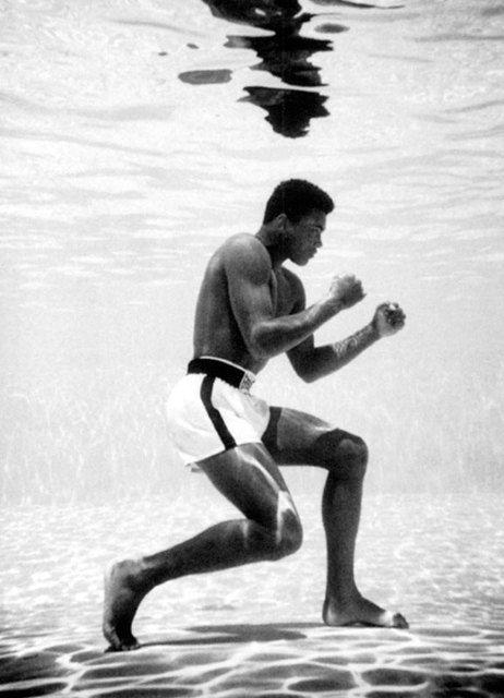 Muhammad Ali Underwater, Miami, 1961 © Flip Schulke courtesy Michael Hoppen Gallery.