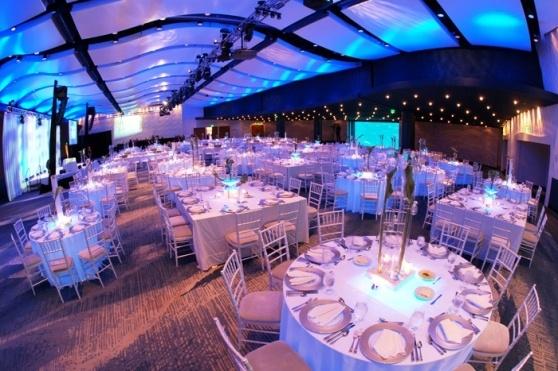 Florida Beach Wedding With Aquarium Reception: Reception At The Georgia Aquarium: Ocean's Grand Ballroom