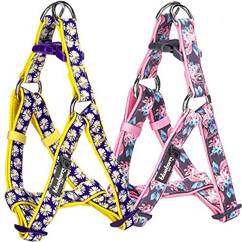 """Blueberry Pet Easter Spring Step-in Harnesses 5/8"""" Small Rosy Prints Girly Adjustable No Pull Ultra-Soft Neoprene Padded Dog Harness This girly dog harness is a gorgeous way to welcome summer. Rosy prints have been a beloved item Read more http://dogpoundspot.com/blueberry-pet-easter-spring-step-in-harnesses-5-8-small-rosy-prints-girly-adjustable-no-pull-ultra-soft-neoprene-padded-dog-harness/ Visit http://dogpoundspot.com for more dog review products"""