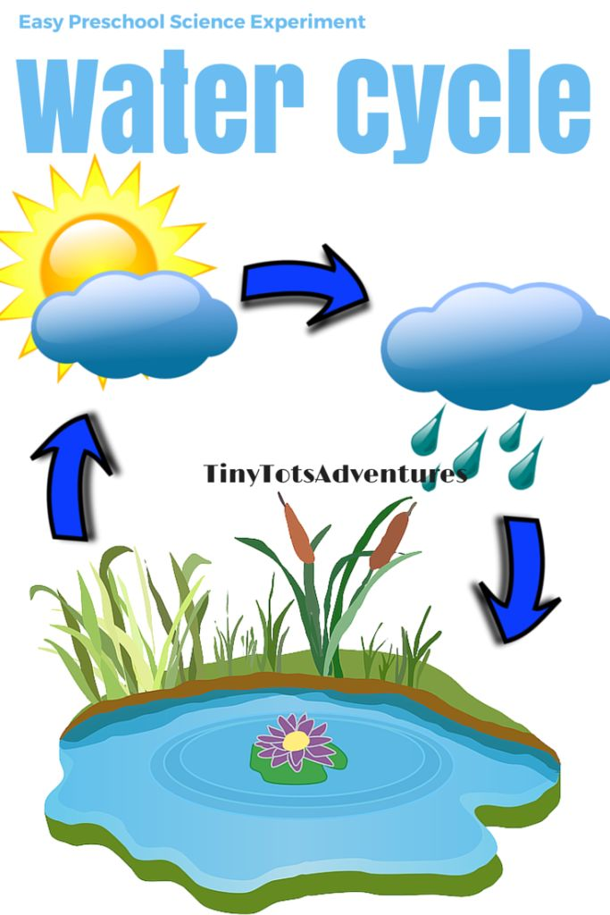 11 best water cycle activities images on pinterest science water cycle ccuart Image collections