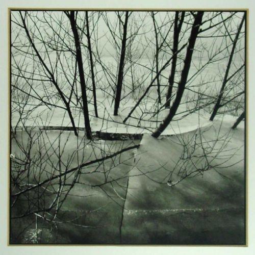 Ijssellandschap - Ben Vulkers - fotografie