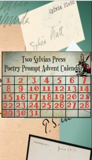 For the Poets or Anyone Who Want to Write New Poems!   An Online Advent Calendar of Poetry Prompts 31surprise poetry prompts to help you write new poems in December 2016! #poetry #poems #poets #writingprompts  from Two Sylvias Press