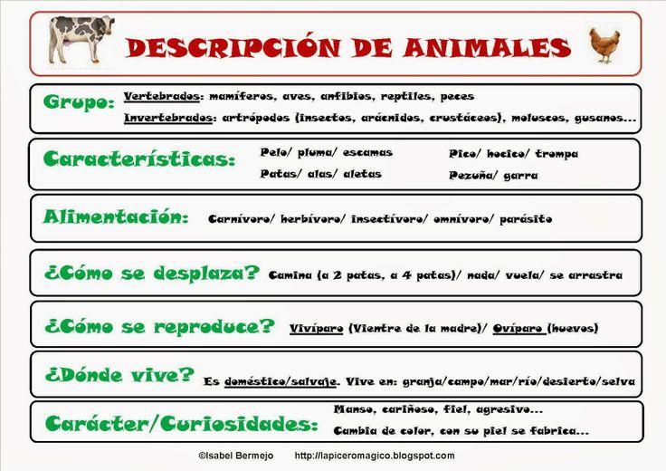 Descripción+de+animales+2.jpg (1600×1131)
