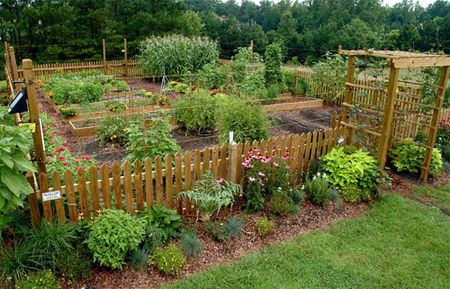 This is my garden inspiration picture - I want this layout, almost exactly.  I love the raised beds and the companion planting and the herbs around the outside. LOVE LOVE LOVE