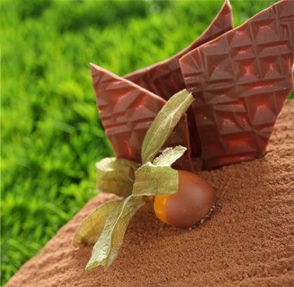 """Nuestro recomendado para disfrutar este miércoles """"TORTA SACHER DIETETICA"""" de la #reposteriaastor  www.elastor.com.co"""
