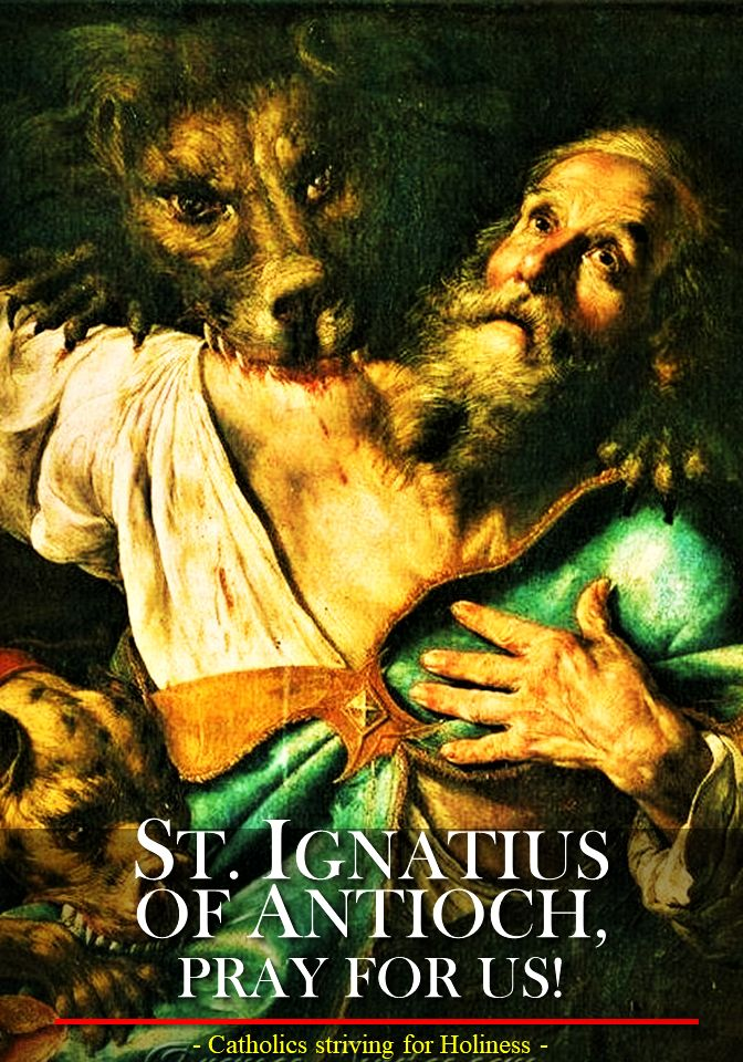 Oct. 17 ST. IGNATIUS OF ANTIOCH, BISHOP AND MARTYR Short bio and letter prior to his martyrdom. -  St. Ignatius of Antioch was the successor to St. Peter as Bishop of Antioch. He suffered martyrdom in Rome during the persecution of Trajan.... ~ Catholics striving for Holiness