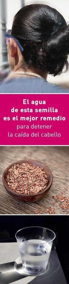 El agua de esta semilla es el mejor remedio para detener la caída del cabello #cabello #pelo #crecer #caida #remedio #casero #agua #linaza