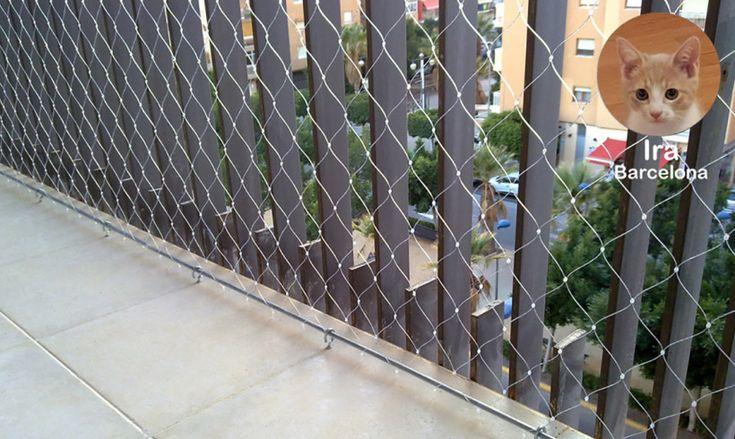 Redes para la protección de caídas de gatos en balcones