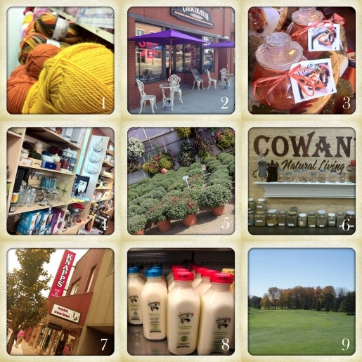 9 of our favourite spots in Listowel, Ontario: Spinrite Yarn Outlet, Chocolates on Main, Vines Collection store, Kitchen Cupboard and Icebox, Listowel Greenhouses, Cowan's Country Store, Knapp's Shoes, Harmony Organic, and the Listowel Golf Club