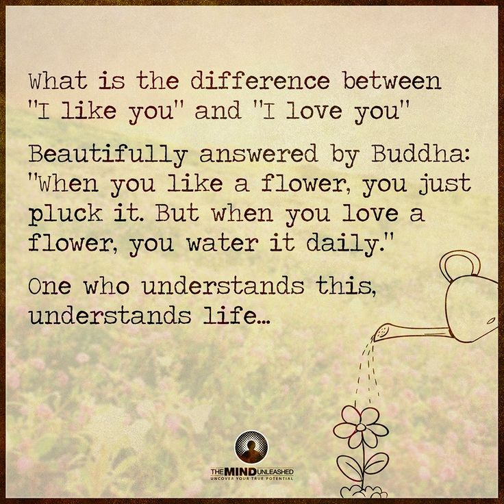 "What is the difference between ""I like you"" and ""I love you""?  Beautifully answered by Buddha: ""When you like a flower, you just pluck it.  But when you love a flower, you water it daily.""  One who understand this, understands life."