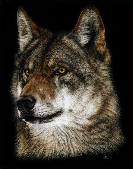 写真と見分けがつかない狼の絵を独学で描く女性アーティスト - GIGAZINE