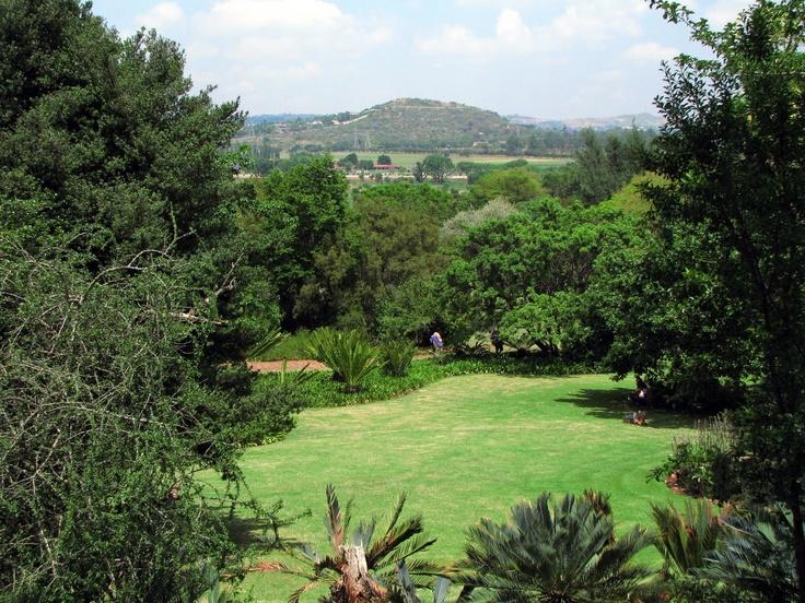 The Pretoria Botanical Garden