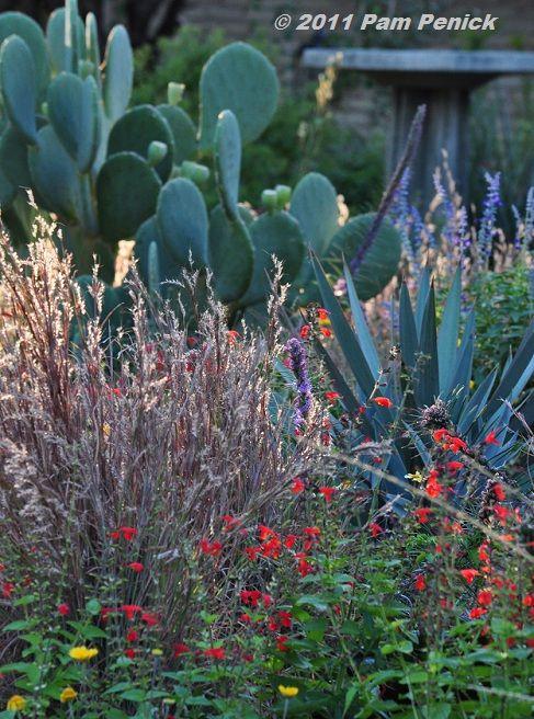 Roses In Garden: Best 25+ Prairie Garden Ideas On Pinterest