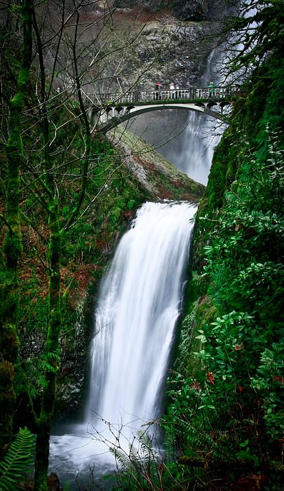 Multnomah Falls, Oregon, ever picture of this place is different, a must visit place...
