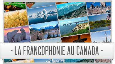 Les portraits de la francophonie au Canada par province.