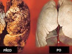 Jak si během 72 hodin očistit plíce