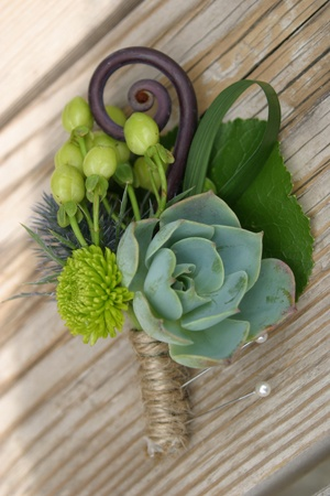 Passion Flowers www.passionflowersdesign.com; Succulent boutonniere, with Echeveria, Fern Curl, Kermit Mum, and blue Thistle, Larner Vineyard