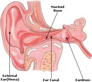 Home Remedies for Earache: Causes, Symptoms, Treatment, Cure, Relief & Diet
