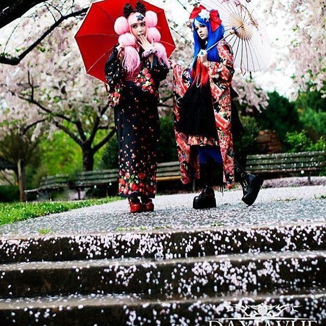 【amaravonnacht】さんのInstagramをピンしています。 《With Miffy. Photo by DayJaVUE #jfashion #japanesefashion #japanesestreetfashion #kimono #cherryblossom #cherryblossoms #sakura #makeup #make_up #punk #punklolita #waloli #walolita #kawaiistyle #kawaii #wig #wigs #metamorphose》
