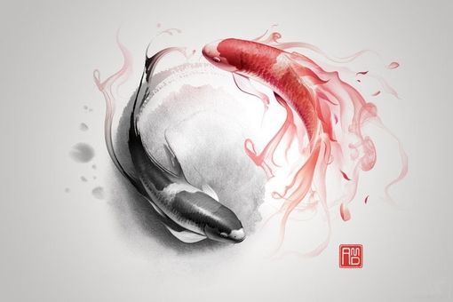 twins - find out why the red in this yin and yang
