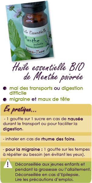 Huile essentielle de menthe poivrée : mal des transports, digestion difficile, maux de tête et migraine.