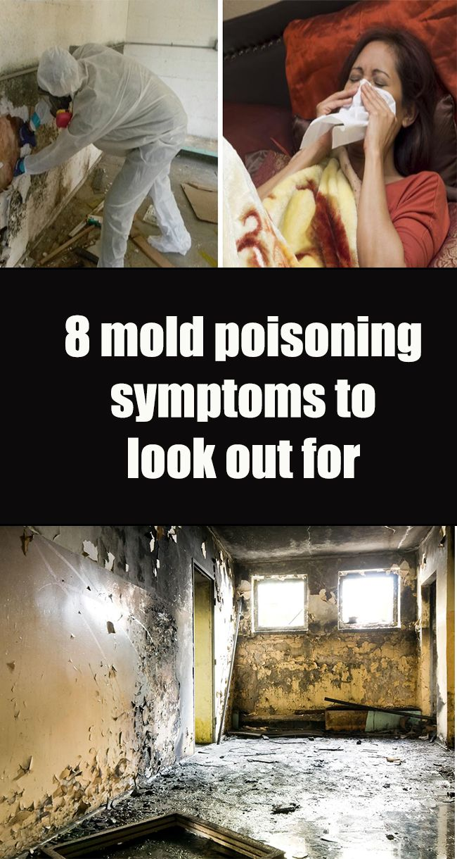 Health is the most important thing in life toxic mold is one of the causes