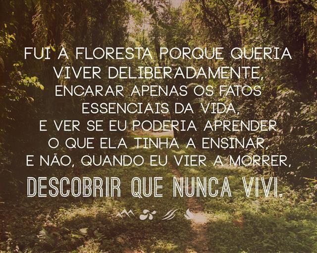 """""""Fui a floresta porque queria viver deliberadamente, encarar apenas os fatos essenciais da vida e ver se eu poderia aprender o que ela tinha a ensinar, e não, quando eu vier a morrer, descobrir que nunca vivi"""" - Henry David Thoreau"""