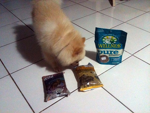 Best Dog Food For Pancreatic Insufficiency