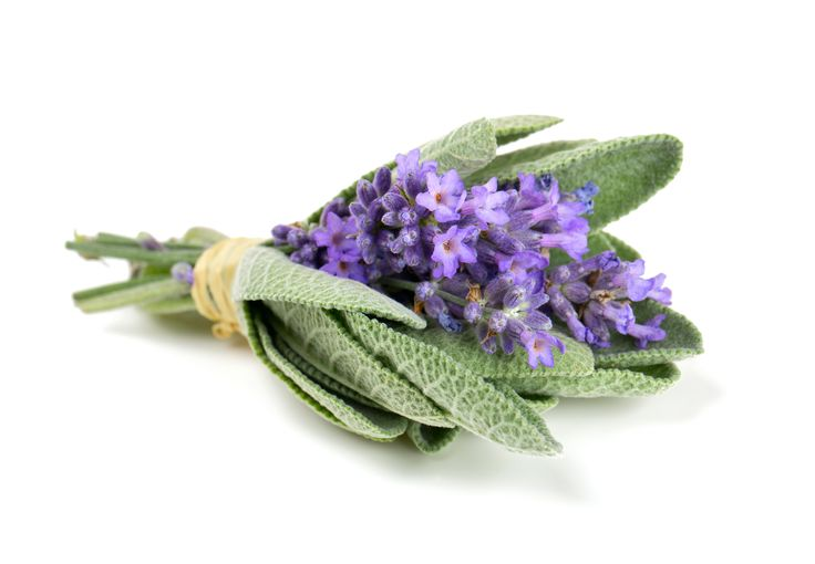 Mix lavender and honey for even more tasteful results!