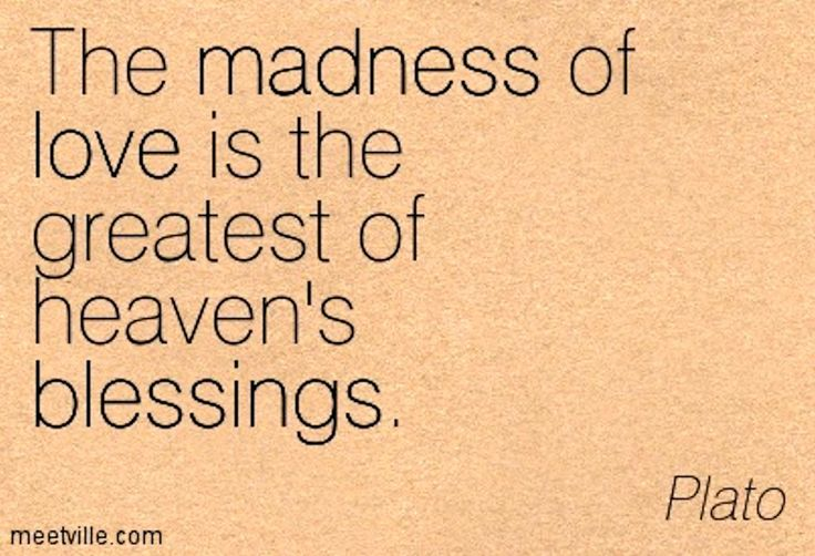 The madness of love is the greatest of Heaven's blessings - Plato