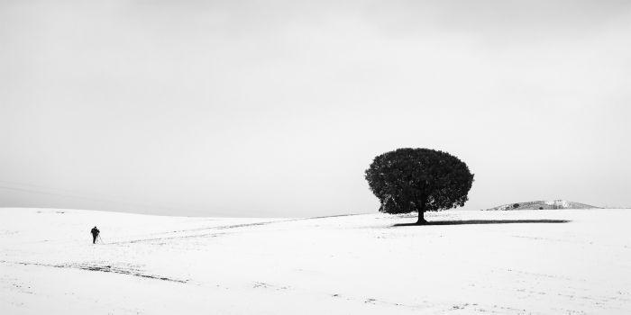 EL FOTÓGRAFO, LA ENCINA Y LA NIEVE  de David Frutos Egea Pasaban ya más de 40 años desde la última nevada en la ciudad de Murcia. La nevada fue tan copiosa que garantizó que al día siguiente pudiésemos gozar de una jornada de fotos en medio de un manto blanco. La neblina presente ayudó a ocultar los fondos que en ese paraje suelen molestar al fotógrafo. La inclusión del factor humano en la escena me sirvió para dimensionar la misma y magnificar la dimensión de la nevada.