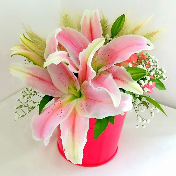 Sometimes you don't need a special occasion to send flowers. After all, pretty much anyone enjoys a nice #floralbouquet. #JLT #NotJustFlowers #FreshFlowers