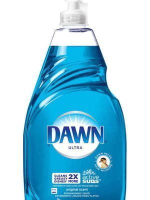 15 Ways You can Use Dawn Dish Soap Other than Washing Dishes kills fleas on carpets #CarpetCleaningMothers #CarpetCleaningSolutionRubbingAlcohol