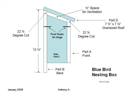 Diy bluebird house
