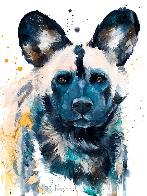 Wild Dog Watercolor Painting Print By Slaveika Aladjova Art